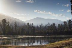 树和小山在湖反射了在马里斯维尔,澳大利亚附近 免版税库存照片