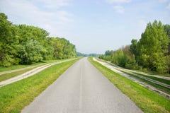 树和小旁道排行的路 免版税库存图片