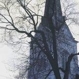树和尖顶 图库摄影