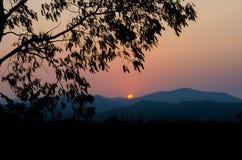 树和山景剪影风景在日落 免版税库存图片