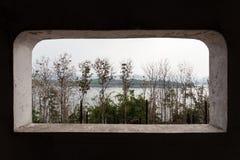 树和山景从窗口 免版税库存照片