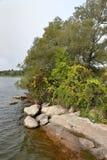 树和岩石在一个海湾的岸沿圣劳伦斯Riv 免版税库存图片