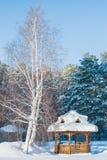 树和房子在冬天,在雪的一个眺望台 免版税库存图片