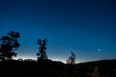 树和星在日落以后 库存图片