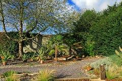 树和植物一个农村庭院场面的 库存照片