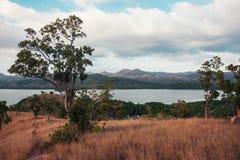 树和植被在小山在热带气候 免版税库存图片