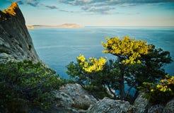 树和海日落的 蓝色克里米亚小山横向赤裸天空 免版税库存照片
