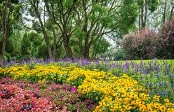 树和花在树木园,坦佩雷,芬兰 库存照片