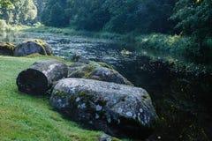 树和草反射在河的汇合的水域中 免版税图库摄影