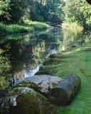 树和草反射在河的汇合的水域中 库存照片