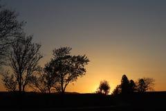 树和表兄弟黑暗的剪影以橙色日落为背景 晚上对一种浪漫心情的自然折叠 温暖的col 图库摄影