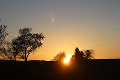 树和表兄弟黑暗的剪影以橙色日落为背景 晚上对一种浪漫心情的自然折叠 温暖的col 免版税库存照片