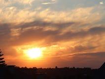 树和表兄弟黑暗的剪影以橙色日落为背景 晚上对一种浪漫心情的自然折叠 温暖的col 免版税库存图片