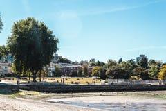 树和议院基斯兰奴海滩的在温哥华,加拿大 库存图片