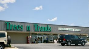 树和趋向回家装饰商店,杰克逊田纳西 免版税图库摄影