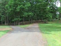 """树和路在罗斯福在爱迪生, NJ,美国停放 Ð """" 库存照片"""