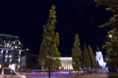 树和路有汽车的blured光的 免版税图库摄影