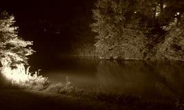 树和水在布鲁日 图库摄影