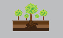 树和绿色 库存图片