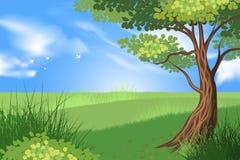 树和绿草场面 免版税库存照片