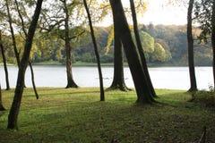 树和Stour Head& x27风景看法; s湖 免版税库存图片