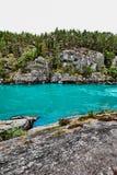 树围拢的山的美丽的绿松石河在挪威 免版税图库摄影
