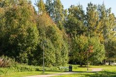 树在一个公园在一秋天天 免版税图库摄影