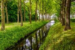 树在一条平直的小河的光滑的表面反射了 免版税库存照片