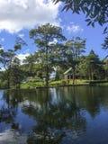 树在丛林地带内格拉山的水反射,马塔加尔帕 免版税库存照片