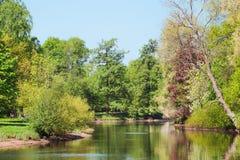 树在公园在春天 库存图片