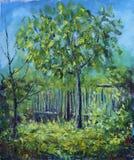 树在农村围场在夏天,篱芭 免版税图库摄影