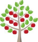 树在夏天用苹果 向量例证