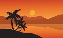 树在日落热带海滩的棕榈树剪影 免版税库存图片
