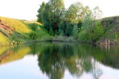 树在水反映的池塘附近站立 免版税库存照片