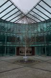 树在现代玻璃办公楼庭院地区  免版税库存照片