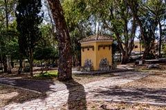 树在科孚岛希腊海岛上的科孚岛镇排行了广场  库存照片