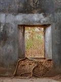树在葡萄酒泰国寺庙里面的老窗口里 库存图片