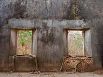 树在葡萄酒泰国寺庙里面的老窗口里 免版税库存照片