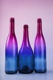 树在颜色的酒瓶 库存图片