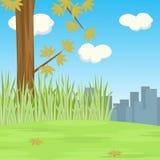 树场面在小山的与城市遮蔽背景 免版税库存照片