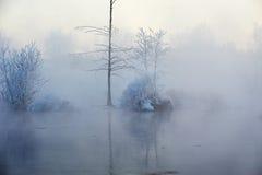 树坚硬霜在冬天雾河 库存照片