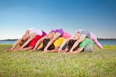 树夫妇、男人和妇女实践在湖边的瑜伽asana。 免版税库存图片