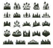 树室外旅行黑色剪影具球果自然徽章、上面杉木云杉分支雪松和植物叶子摘要 库存照片