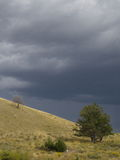 树小山和风暴 库存照片