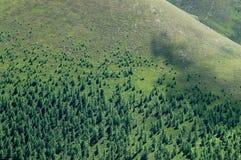 树带界线 图库摄影