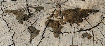 树干地图012 库存照片