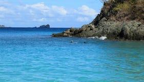 树干海湾在圣约翰 免版税库存图片