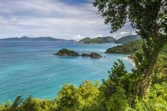 树干海湾,圣约翰, U S 处女的海岛 免版税库存图片