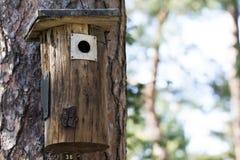 树干的手工制造鸟舍ontop 免版税库存照片