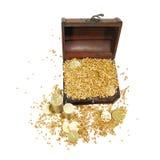 树干空白装载谷物和裂口 免版税库存照片